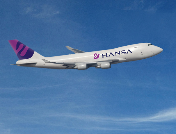 Airline livery design